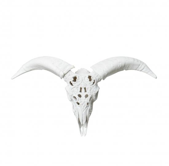 Vit skalle med horn väggdekoration