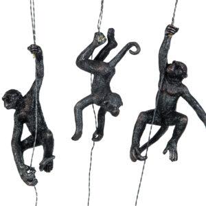 Hängande klättrande apor