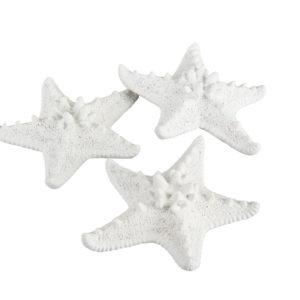 Sjöstjärna vit dekoration