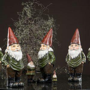 Tomte vätte jul dekoration