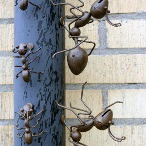 Myror magnet i rostig metall